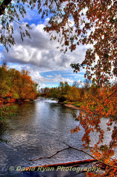Boise River in Fall