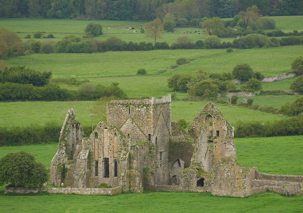 Below the Rock are the ruins of the Hore Abbey, a Cistercian abbey built in 1272.   Prior to the Norman invasion, Ireland had hundreds of monastic sites throughout the country.