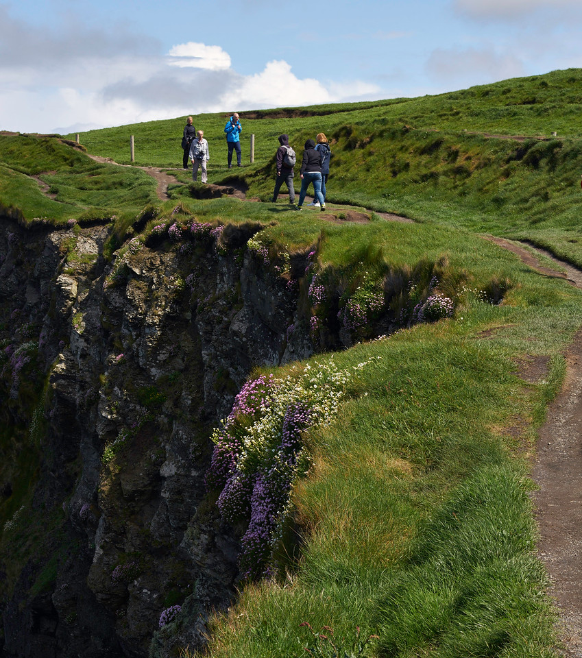 With cliffs dropping hundreds of feet to the ocean all along the coast and no guard rails, it was easy to be lured by the pretty flowers along the edge of the cliffs but Coralie made sure that we all stayed safely away from the edge.