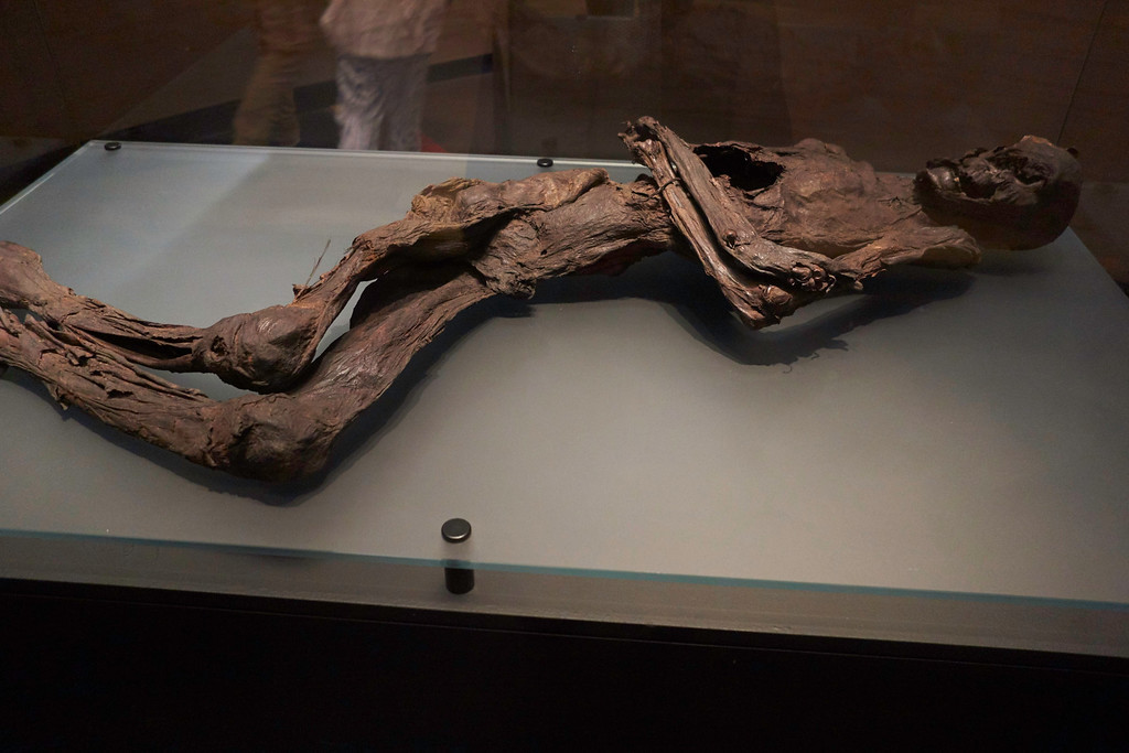 Many important ancient relics have been found in the peat bogs in Ireland but some of the most unexpected were mummified people, popularly known as Bog Bodies