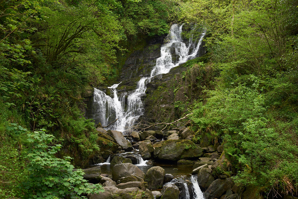 Our hike from Muckross to Tork Falls in Killarny National Park was a part of the trip that we had been looking forward to for weeks.  The lakes, streams, forest and absolute natural beauty at every turn made it a place to remember.