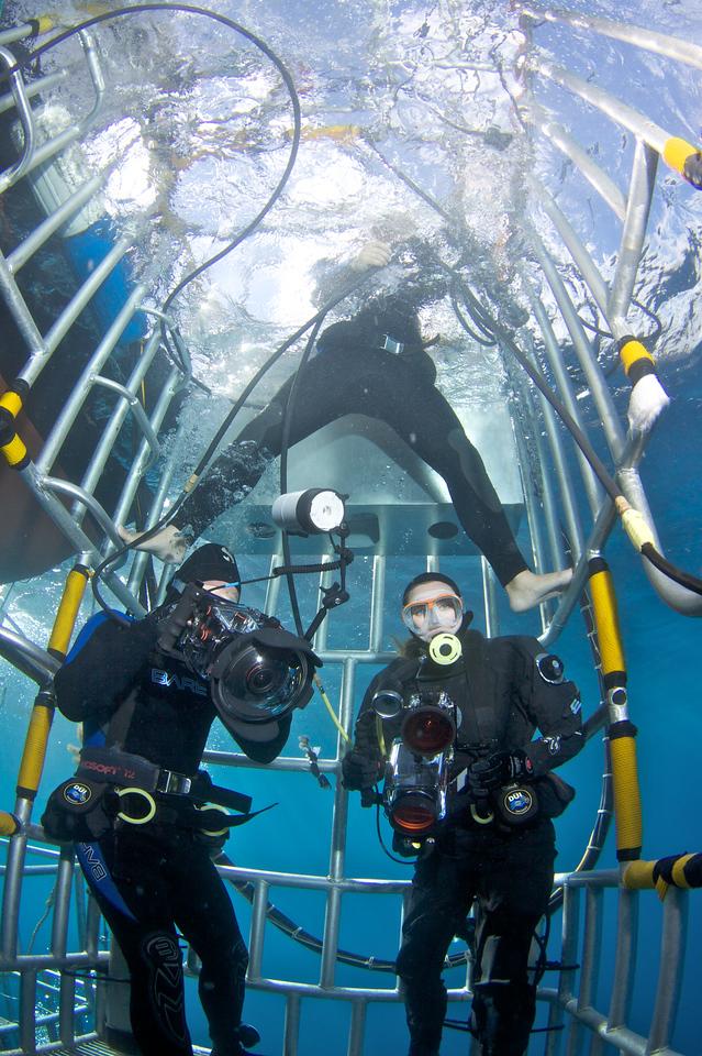Inside shark cage