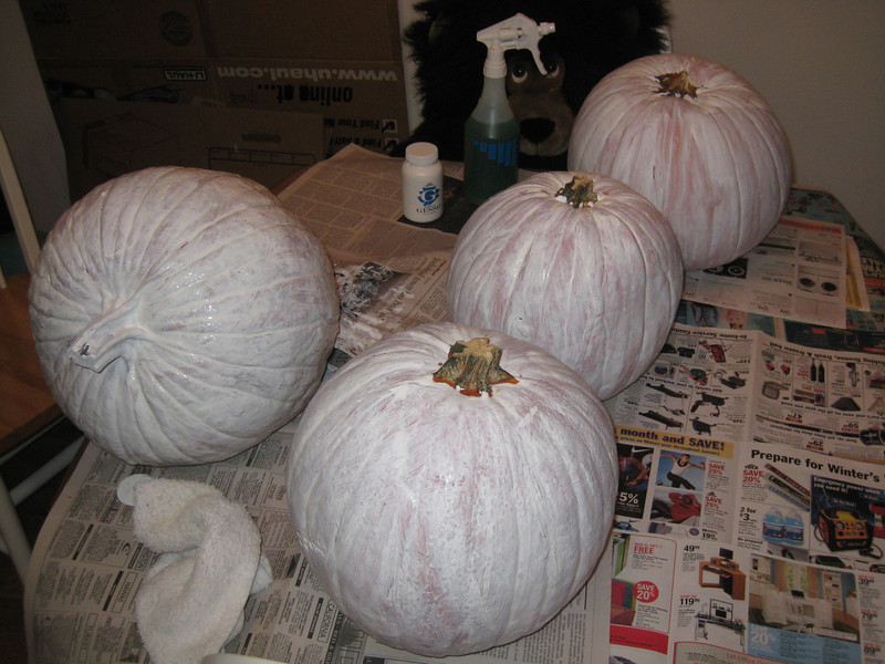 All four pumpkins covered with gesso and drying