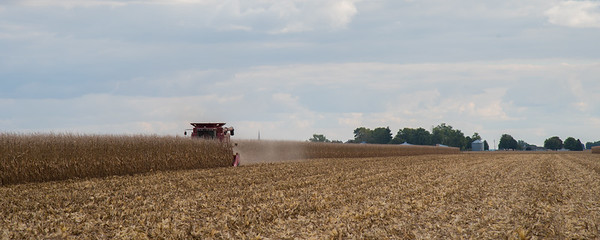 harvest-063