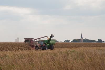 harvest-016-2