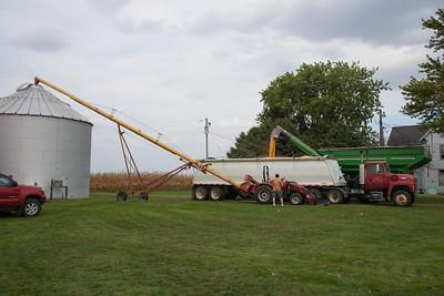 harvest-033