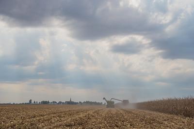 harvest-047-2