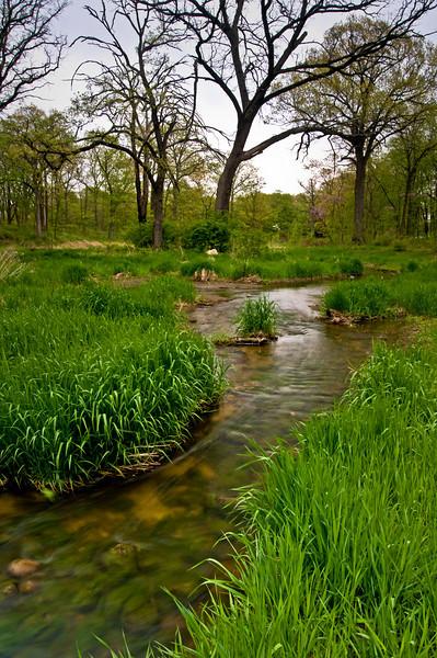 Willoway Spring