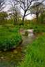 ARB036V                       Spring rains flow through Willoway Brook, Morton Arboretum, Lisle, IL.