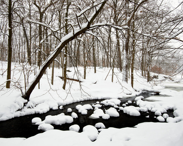 ARB134H                     Willoway Brook flows through a beautiful winter woodland landscape at The Morton Arboretum, Lisle, Illinois.