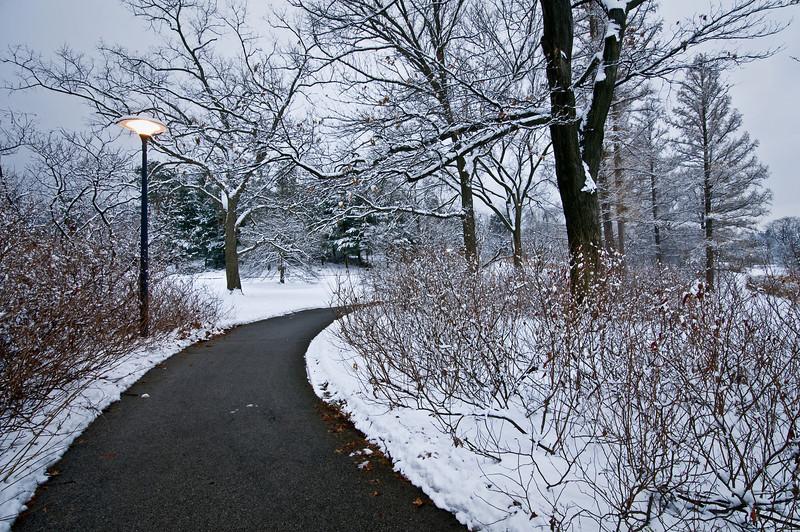 Meadow Lake Path