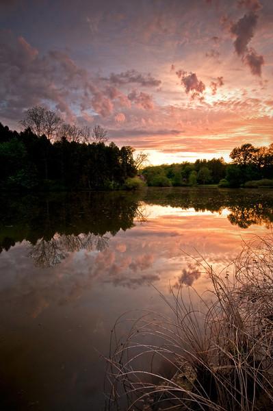 ARB054V                  A spring sunset over Lake Marmo, Morton Arboretum, Lisle, IL.