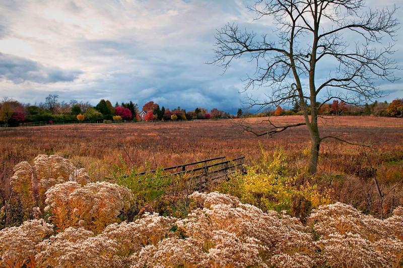 Schulenberg Autumn