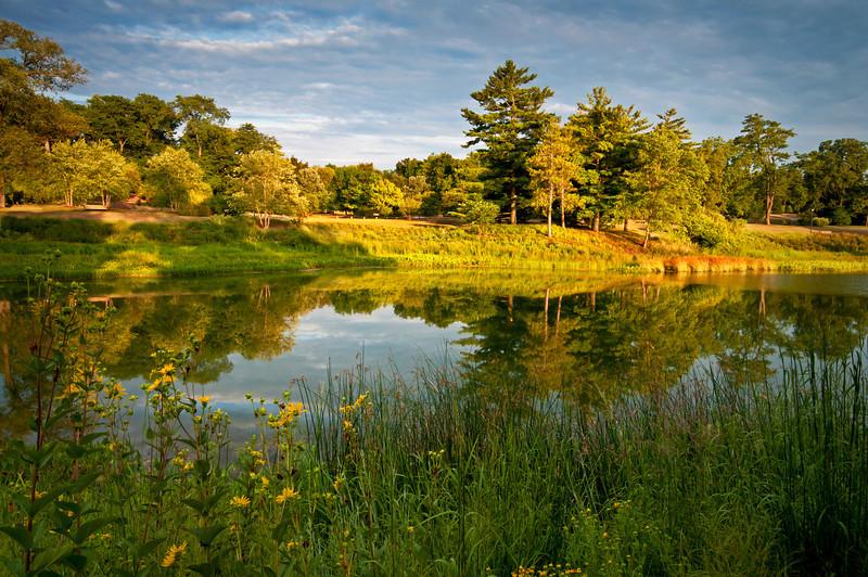 ARB102H                       Sunset light on the shoreline of Meadow Lake at the Morton Arboretum, Lisle, IL.