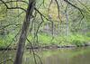 On Sterling Pond