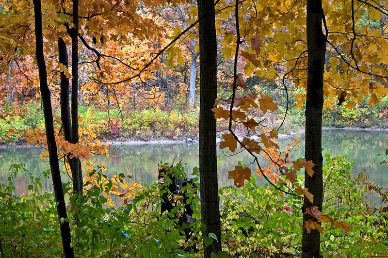Autumn on Sterling Pond