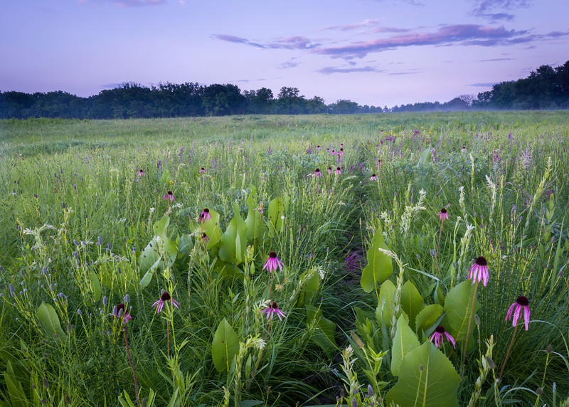 Prairie Path