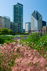 Chicago Gardens