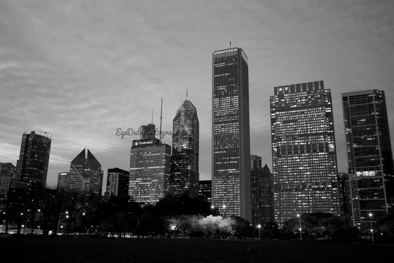 City Skyline from Grant Park