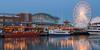 Navy Pier Reflection