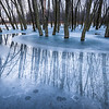 BW 006<br /> <br /> Winter reflections at Big Woods Forest Preserve, DuPage County, Illinois.