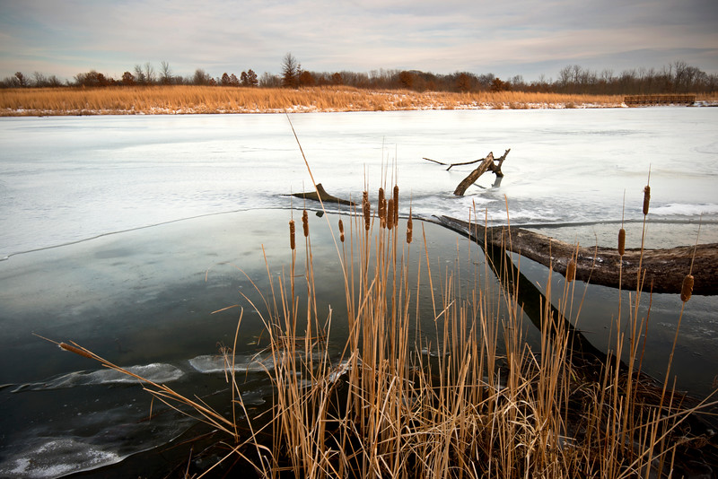 BFP 001<br /> <br /> Sanctuary Pond in winter.  Blackwell Forest Preserve, DuPage County, Illinois.