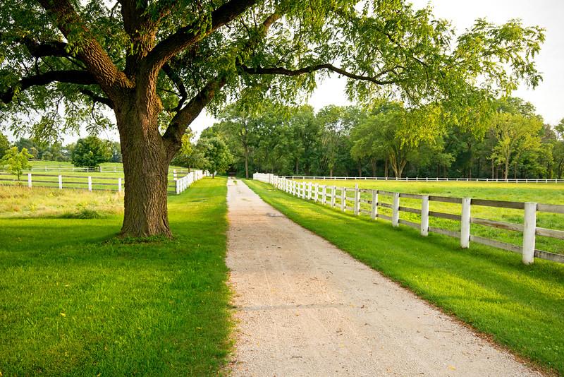 DFP 006<br /> <br /> Horse pastures at Danda Equestrian Center.  Danada Forest Preserve, DuPage County, Illinois.