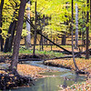 FBW 011<br /> <br /> Bronswood Tributary winds its way through an autumn landscape at Fullersburg Woods Forest Preserve, DuPage County, Illinois.