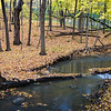 FBW 017<br /> <br /> Bronswood Tributary flows through the autumn woods at Fullersburg Woods Forest Preserve, DuPage County, Illinois.
