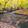 FBW 015<br /> <br /> Autumn on Bronswood Tributary.  Fullersburg Woods Forest Preserve, DuPage County, Illinois.