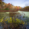 GV 012<br /> <br /> A secluded woodland pond in autumn at Greene Valley Forest Preserve, DuPage County, Illinois.