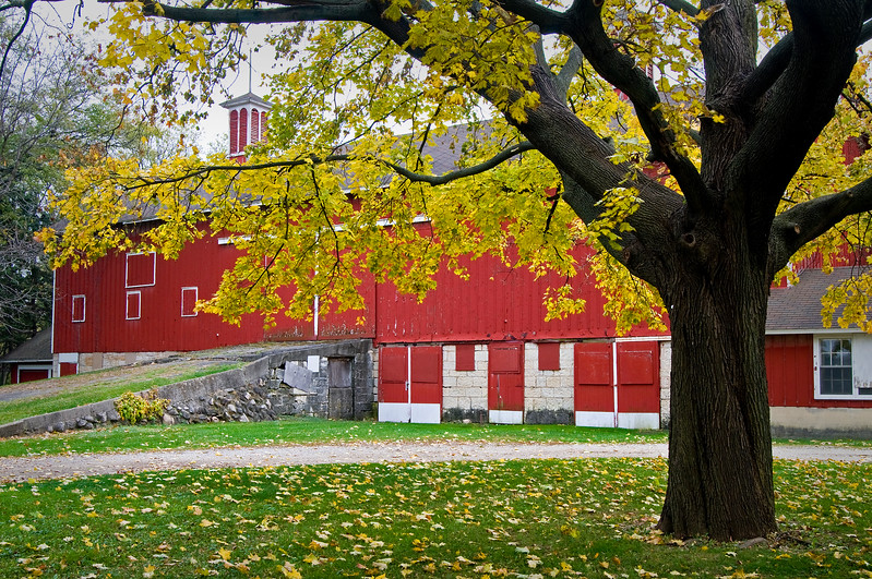 GV 004<br /> <br /> The historic 1841 barn at Greene Valley Forest Preserve, DuPage County, Illinois.