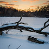 HL 025<br /> <br /> A set of fox tracks meanders across the snow-covered surface of a small lake at sunset.  Herrick Lake Forest Preserve, DuPage County, Illinois.