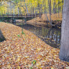 MplGrv 004<br /> <br /> Autumn on St. Joseph's Creek.  Maple Grove Forest Preserve, DuPage County, Illinois.