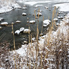 McDGrv 005<br /> <br /> Winter on Ferry Creek.  McDowell Grove Forest Preserve, DuPage County, Illinois.