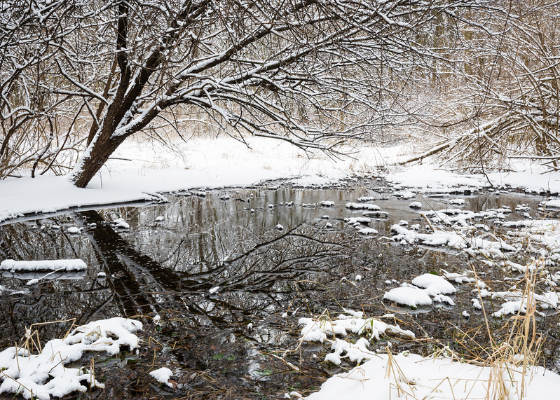 OFO 002<br /> <br /> A small stream flows through a snowy winter landscape at Oldfield Oaks Forest Preserve, DuPage County, Illinois.
