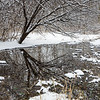 OFO 004<br /> <br /> A small stream flows through a snowy winter landscape at Oldfield Oaks Forest Preserve, DuPage County, Illinois.