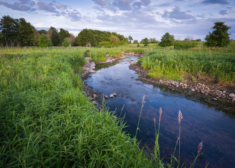 SBP 171<br /> <br /> Spring Brook Creek winds its way through the summer prairie at Springbrook Prairie Nature Preserve, DuPage County, Illinois.