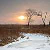 SBP 090<br /> <br /> A winter sunrise at Springbrook Prairie Nature Preserve, DuPage County, Illinois.