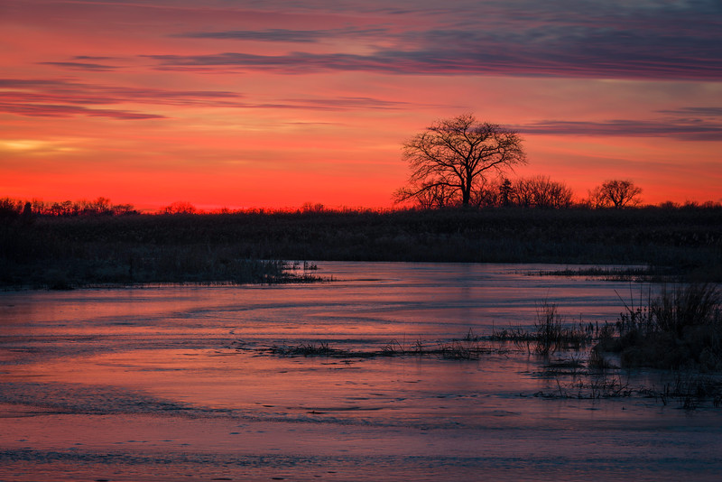 SBP 132<br /> <br /> The colors of a vivid winter sunset sky are reflected in the frozen surface of Crooked Slough.  Springbrook Prairie Nature Preserve, DuPage County, Illinois.