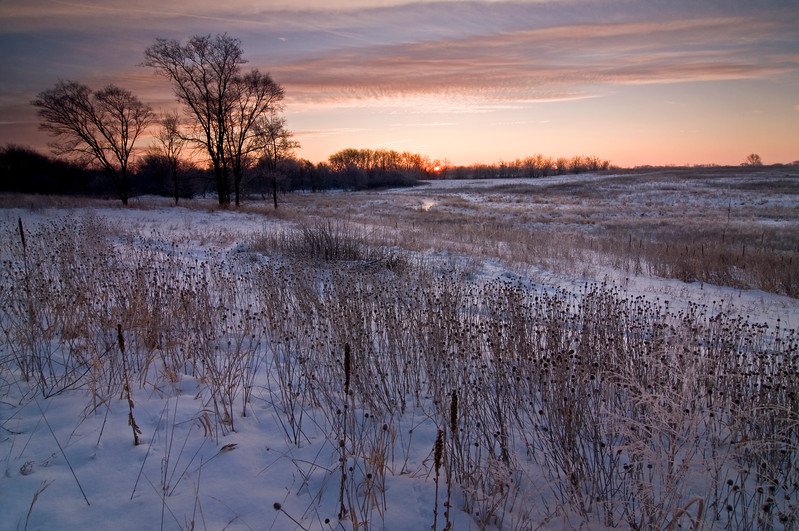 SBP 026<br /> <br /> A winter sunrise over the frozen prairie at Springbrook Prairie Nature Preserve, DuPage County, Illinois.