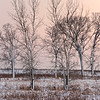 SBP 098<br /> <br /> A winter day ends in a peaceful twilight at Springbrook Prairie Nature Preserve, DuPage County, Illinois.