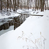 SBP 085<br /> <br /> Spring Brook Creeks flows peacefully through a winter landscape at Springbrook Prairie Nature Preserve, DuPage County, Illinois.