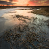 SBP 148<br /> <br /> A winter sunset over a frozen wetland marsh at Springbrook Prairie Nature Preserve, DuPage County, Illinois.