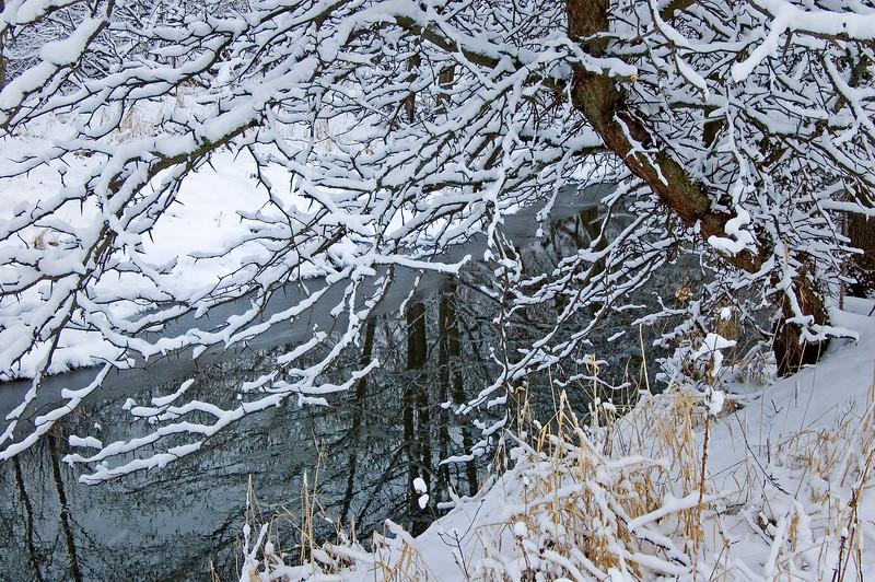 SBP 019<br /> <br /> Spring Brook Creek flows through the winter landscape at Springbrook Prairie Nature Preserve, DuPage County, Illinois.