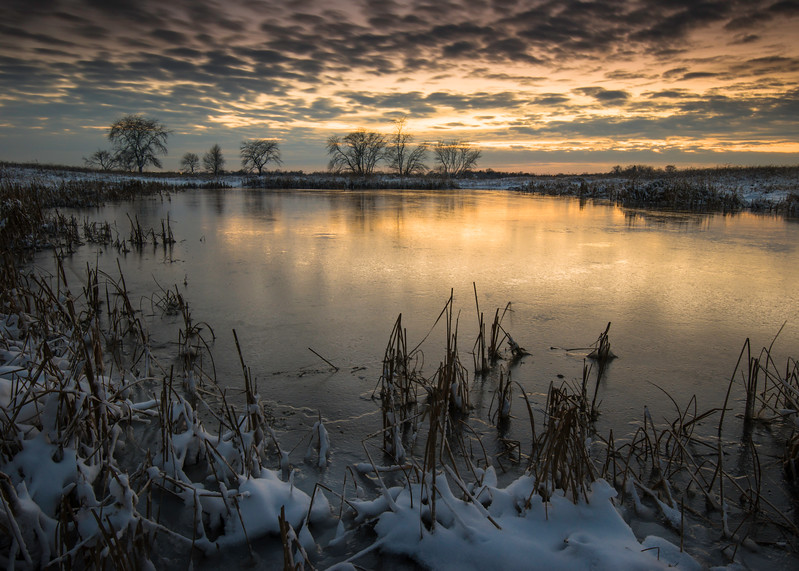 SBP 206<br /> <br /> Twilight tones warm the frozen surface of Crooked Slough.  Springbrook Prairie Nature Preserve, DuPage County, Illinois.