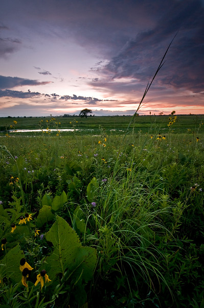 SBP 163<br /> <br /> Clearing storm clouds at sunset.  Springbrook Prairie Nature Preserve, DuPage County, Illinois.