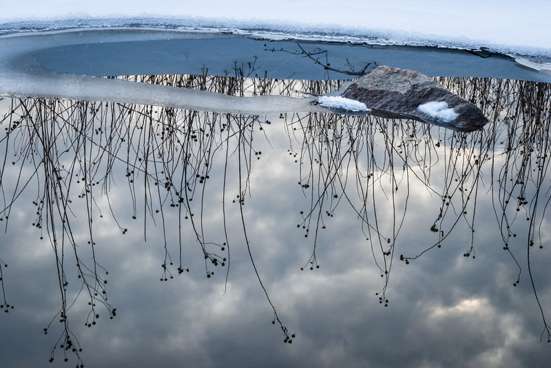 SBP 227<br /> <br /> Winter reflections along the frozen shoreline of Spring Brook.  Springbrook Prairie Nature Preserve, DuPage County, Illinois.