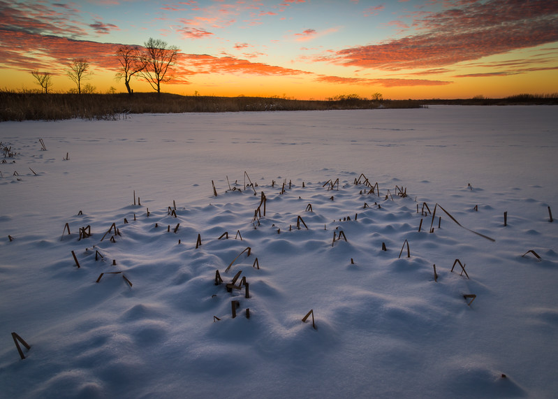 SBP 211<br /> <br /> A colorful end to a winter day at Springbrook Prairie Nature Preserve, DuPage County, Illinois.