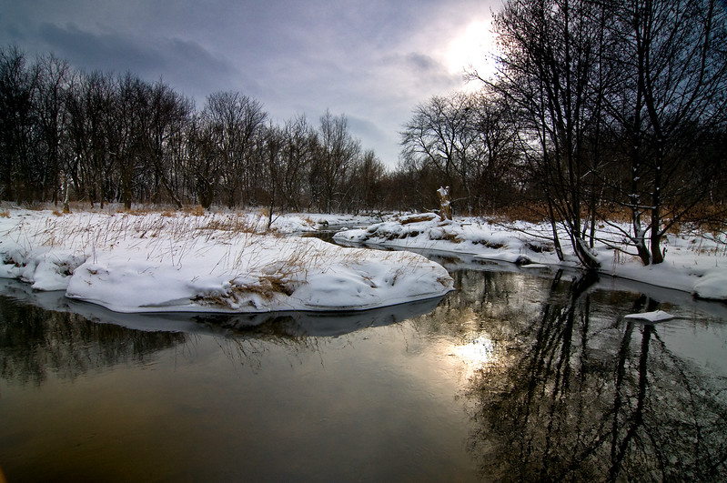 SBP 069<br /> <br /> A pale winter sun shines down on Spring Brook Creek.  Springbrook Prairie Nature Preserve, DuPage County, Illinois.